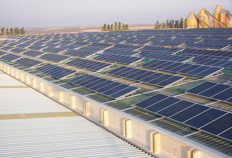 Ganar dinero con fotovoltaica