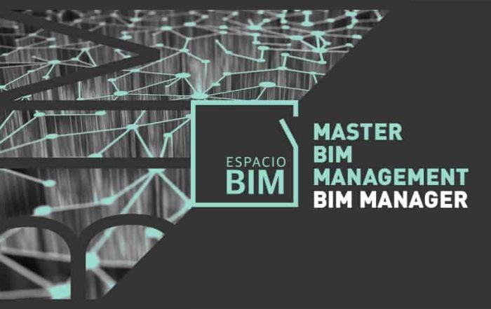 Master Bim Manager
