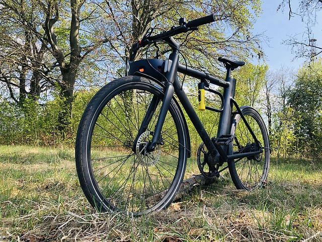 Bicicleta eléctrica de montaña en el campo